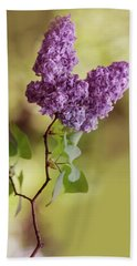 Branch Of Fresh Violet Lilac Beach Sheet