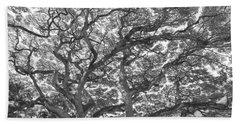 Branches Beach Sheet