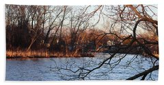 Branches Over Water Beach Towel