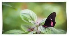 Brave Butterfly  Beach Sheet