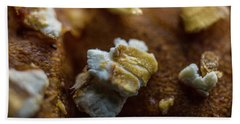 Bread Macro Food Beach Sheet by David Haskett