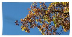 Bright Autumn Branch Beach Sheet