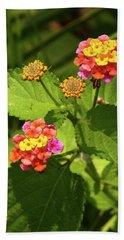 Bright Cluster Of Lantana Flowers Beach Sheet