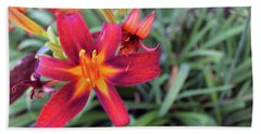 Bright Orange Day Lily Beach Sheet