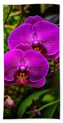 Bright Purple Orchids Beach Towel by Garry Gay