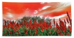 Beach Sheet featuring the photograph Bright Red Aloe Flowers By Kaye Menner by Kaye Menner