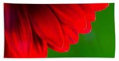 Bright Red Chrysanthemum Flower Petals And Stamen Beach Sheet