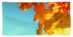 The Lord Of Autumnal Change Beach Towel