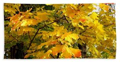 Beach Towel featuring the photograph Brilliant Maple Leaves by Will Borden