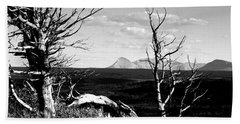 Bristle Cone Pines With Divide Mountain In Black And White Beach Towel