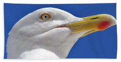 Beach Towel featuring the photograph British Herring Gull by Terri Waters