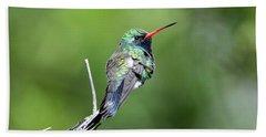 Broad-billed Hummingbird Beach Towel