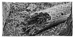 Broken Tree Beach Sheet