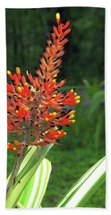 Bromeliad Beach Towel