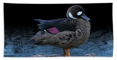Bronze-winged Duck Beach Towel