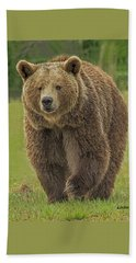 Brown Bear 1 Beach Sheet