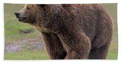 Brown Bear 14.5 Beach Towel