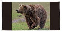 Brown Bear 14.5 Beach Sheet