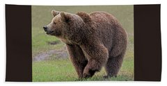 Brown Bear 14.5 Beach Sheet