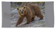 Brown Bear 3 Beach Towel
