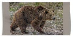 Brown Bear 6 Beach Sheet