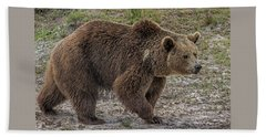 Brown Bear 6 Beach Sheet
