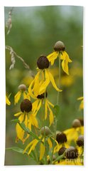 Beach Towel featuring the photograph Brown-eyed Susan by Maria Urso