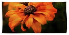 Beach Towel featuring the photograph Brown Eyed Susan by Mary Jo Allen