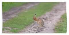 Brown Hare Cleaning Beach Towel