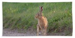Brown Hare Listening Beach Towel