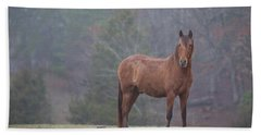 Brown Horse In Fog Beach Towel