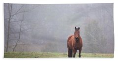 Brown Horse In Virginia Fog Beach Towel