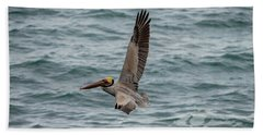 Brown Pelican In La Jolla Beach Towel