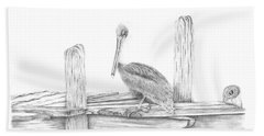 Beach Sheet featuring the drawing Brown Pelican by Patricia Hiltz