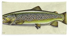 Brown Trout Id Beach Towel