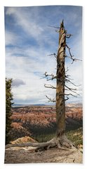 Bryce Canyon Point Trees Beach Towel