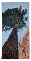 Bryce Pine Beach Sheet