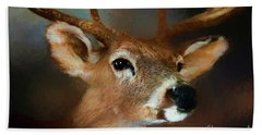 Beach Towel featuring the photograph Buck by Darren Fisher