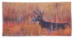 Buck Deer In Morning Sunlight Beach Sheet
