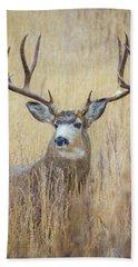Buck In Snow Beach Sheet