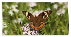 Buckeye Butterfly Posing Beach Towel