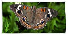 Buckeye Butterfly Beach Sheet