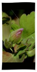 Bud And Spider Silk Beach Towel