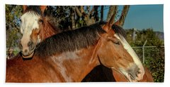 Beach Sheet featuring the photograph Budweiser Clydesdales  by Bill Gallagher