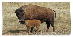 Buffalo With Newborn Calf Beach Sheet