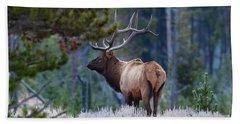 Bull Elk In Forest Beach Towel