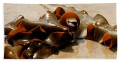 Bull Kelp Beach Towel by Lexa Harpell