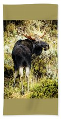 Bull Moose Beach Sheet