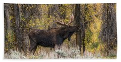 Beach Towel featuring the photograph Bull Moose Talk by Yeates Photography
