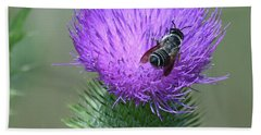 Bull Thistle And Leafcutter Bee Beach Towel